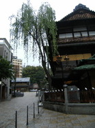 2008_0510shikoku0005