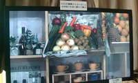 2008_0524nhk0001