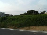 2008_0719chiba0048