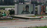 2008_0824hakodate_sapporo0026