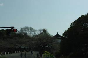 Hatobustour0038