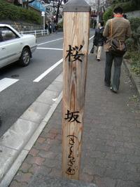 2008032829_sakura0009