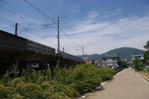 2010_06060009