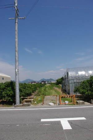 2010_06060037