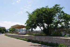 2010_06060045