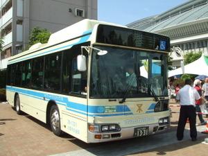2010_09120041