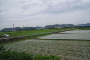 2011_0607080045