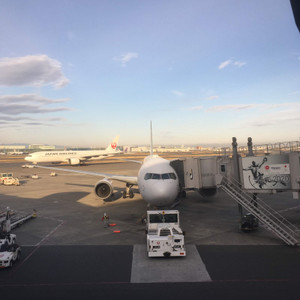 20190210jal
