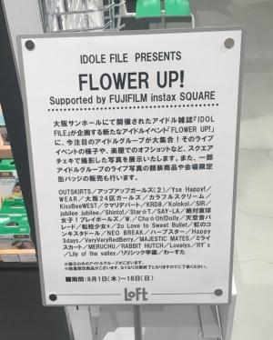 Loftginza_flowerup