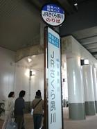 Sakurashukugawa03