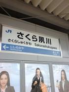 Sakurashukugawa06