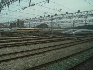 2009_0307kyushu0035