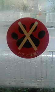 2009_0404wakayama_window0053
