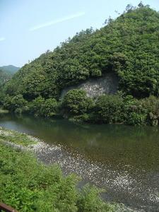 2009_0531iwakuni0028