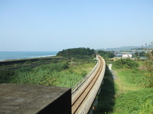 2009_1003kochi0146
