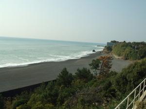 2009_1129kochi0238