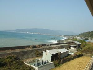 2009_1129kochi0284